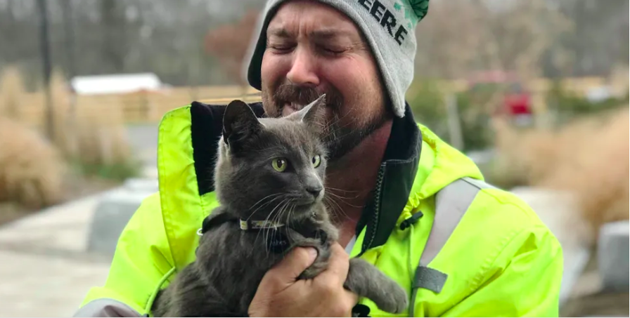 A truck driver broke into tears when his beloved cat found his way back to him after months of searching.